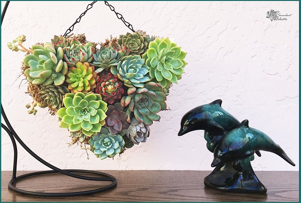 Mothers Day DIY Succulent Topiary Heart