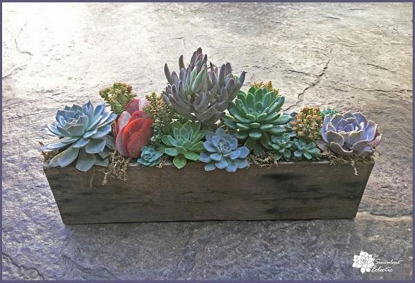 DIY Pallet Planter for Succulents