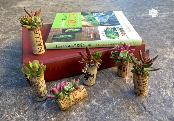DIY Wine Cork Succulent Magnet Mini Planters!