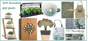 21 Succulent Gift Ideas | 2018 Gift Guide