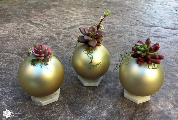 DIY Christmas Balls with Living Succulents!