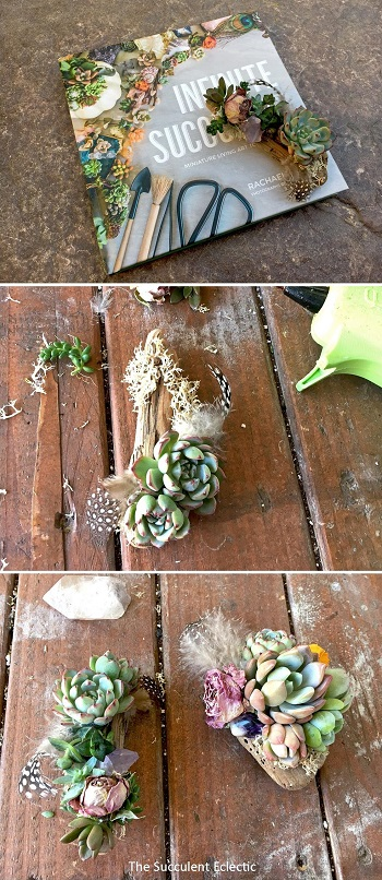 DIY succulent magnets on driftwood twigs