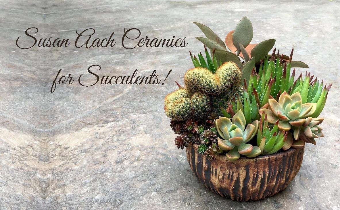 Susan Aach Ceramic Pots for Succulents