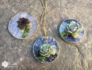 DIY Geode Slice Succulent Favors & Ornaments!
