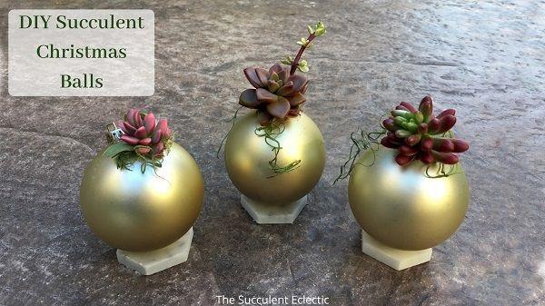 DIY succulent Christmas ball ornaments