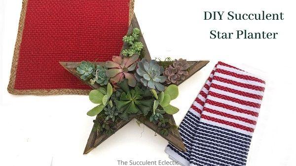 diy succulent star planter