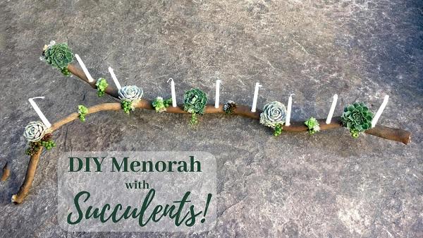 DIY Menorah succulent branch