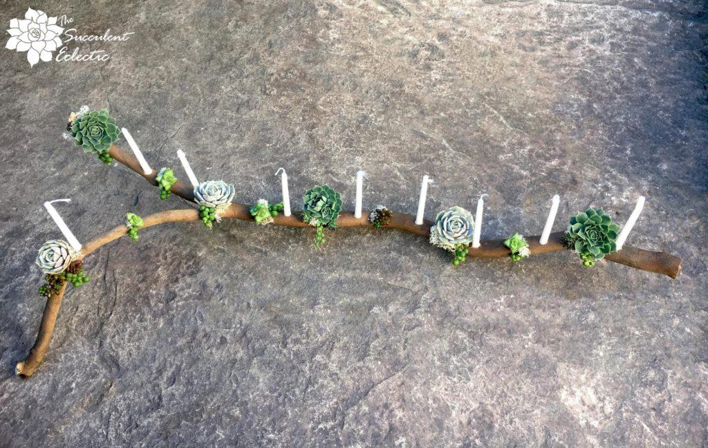 DIY menorah succulent branch completed