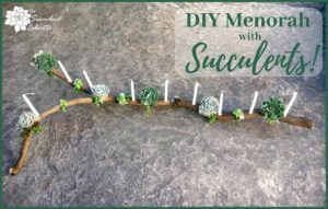 DIY Menorah Succulent Branch