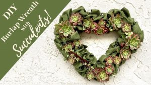 DIY Burlap Wreath with Succulents!
