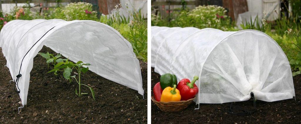 tierra crop covers protect plants in winter
