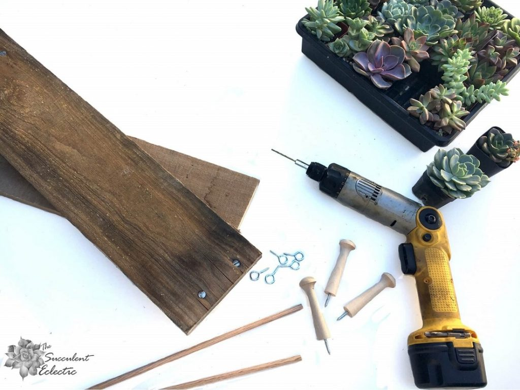 Supplies for DIY Advent calendar tree with succulents