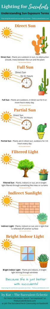 What do sun exposure terms like direct sun, full sun, indirect sunlight mean? infographic