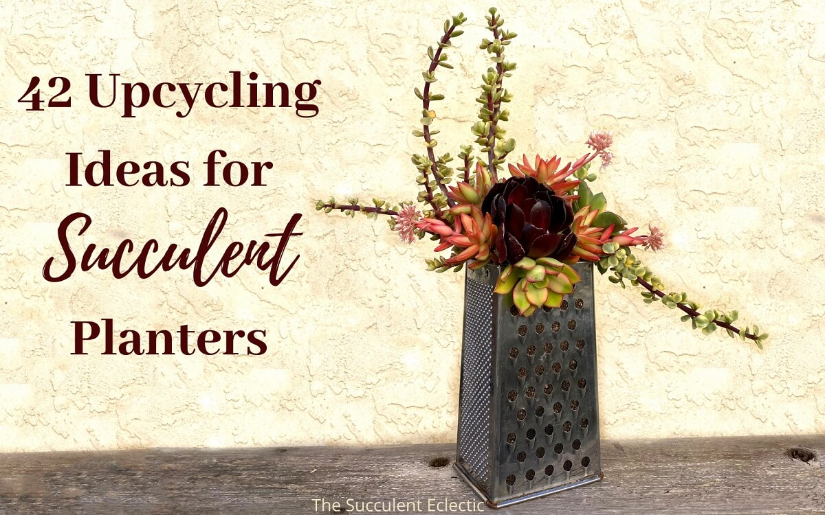 42 Upcycling Ideas for Succulent Planters