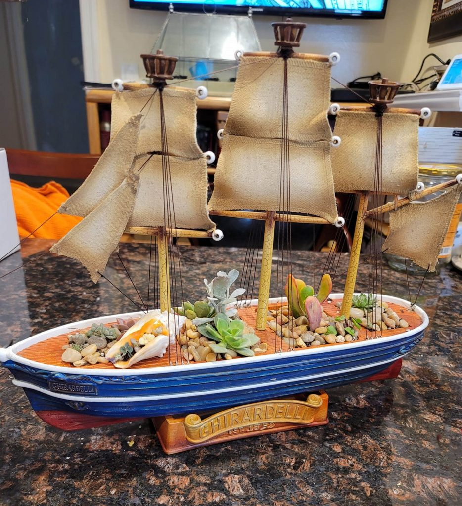 Upcycled Ghirardelli ship planted with succulents