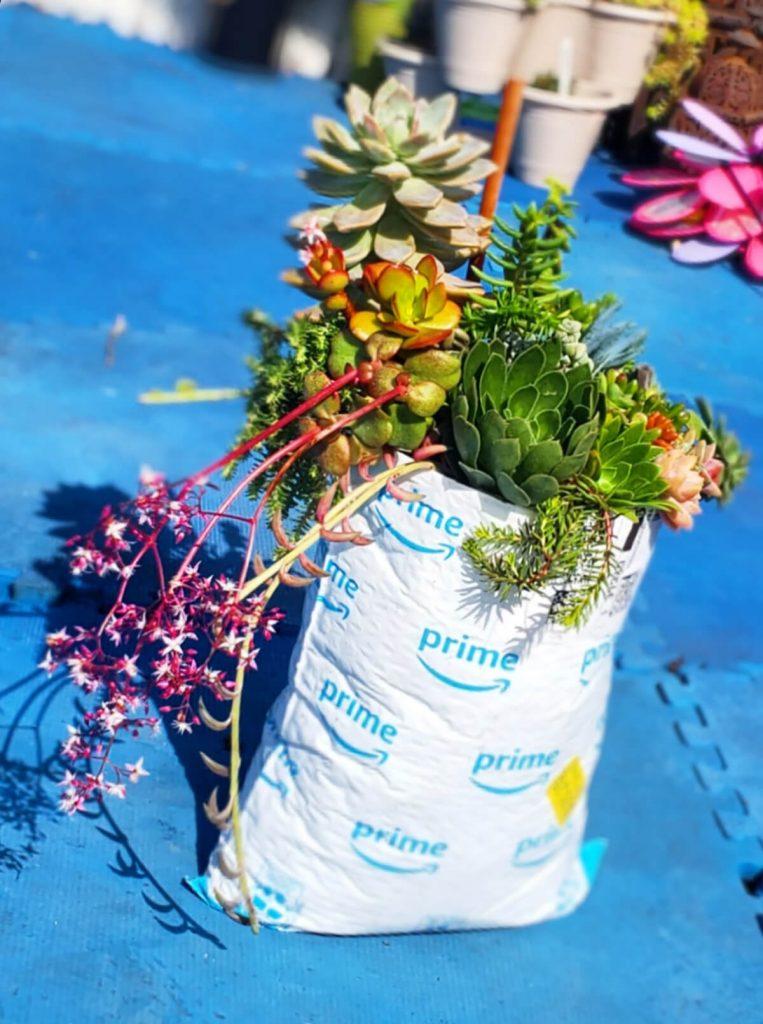 upcycling Prime bubble wrap envelope as a succulent planter