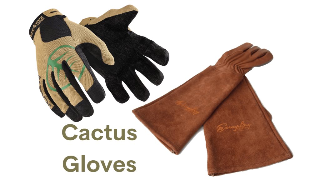 cactus gloves for handling cactus safely
